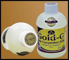 jelly gamat gold-g hepatitis B pada ibu hamil 2